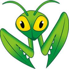 Mantis Bug Tracker 2